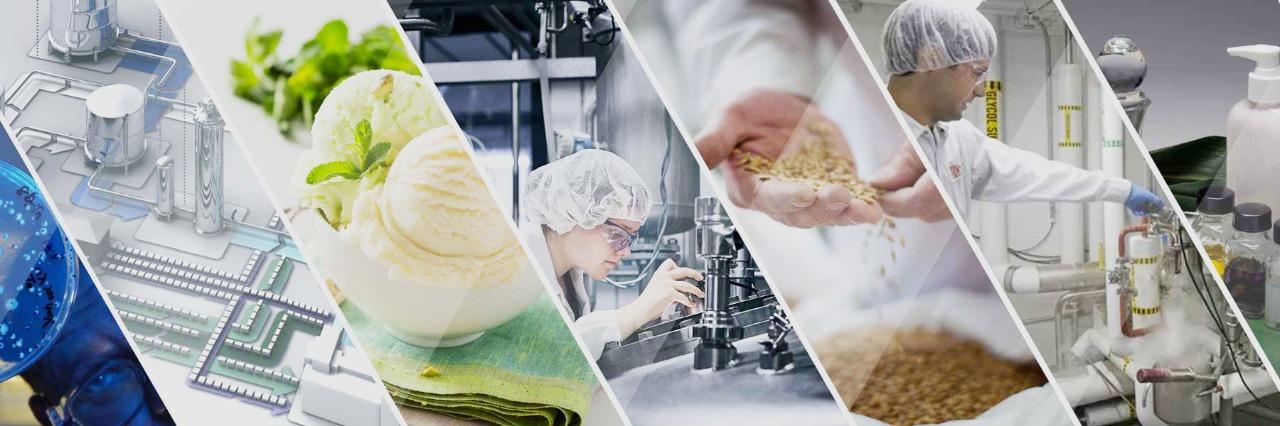 Инновационные технологии продуктов из растительного сырья