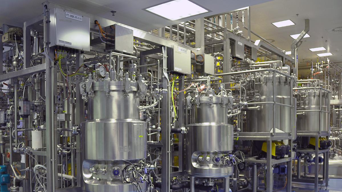 Пищевая биотехнология продуктов животного происхождения