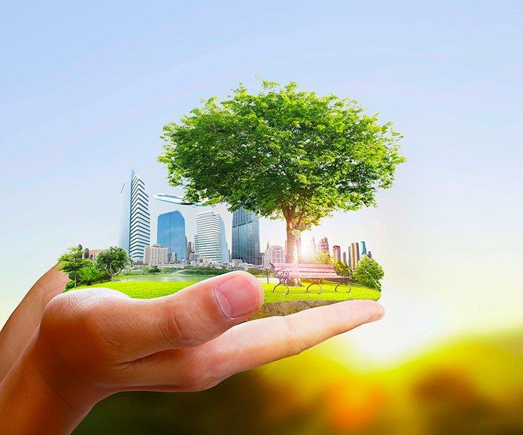 Природно-хозяйственные технологии экобезопасности крупных городов