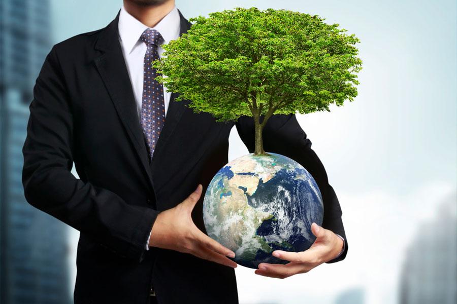 Территориальный экологический менеджмент