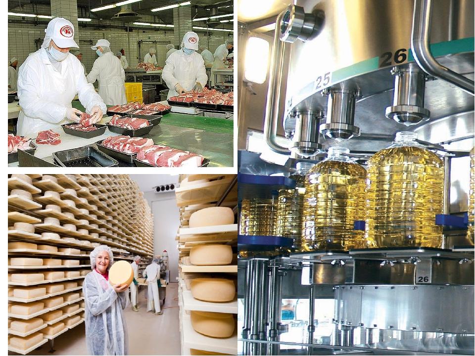 Экономика и организация предприятия пищевой промышленности