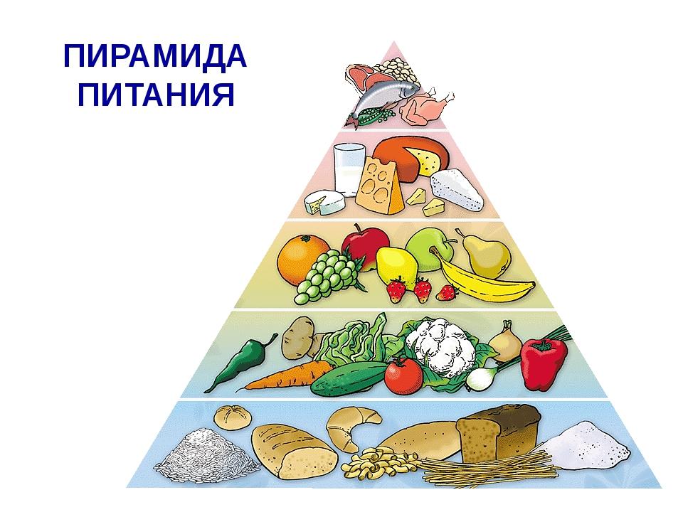 Принципы проектирования состава и свойств продуктов животного происхождения для персонифицированного питания