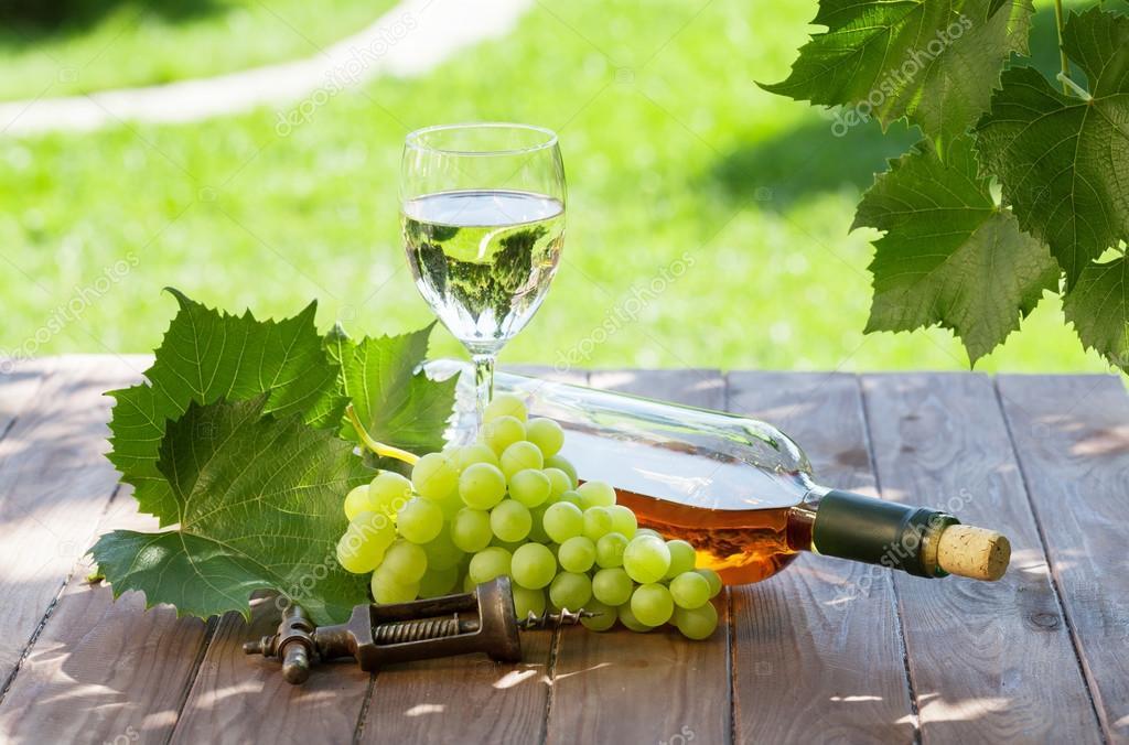 Технология виноделия