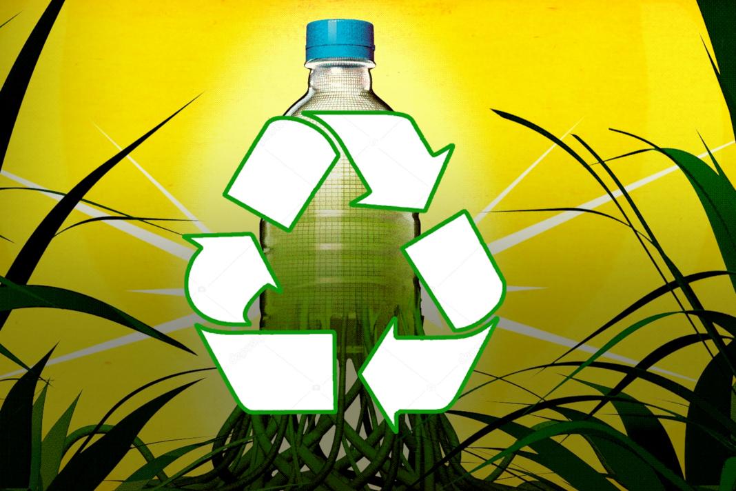 Биоразрушаемые полимерные материалы в пищевой промышленности