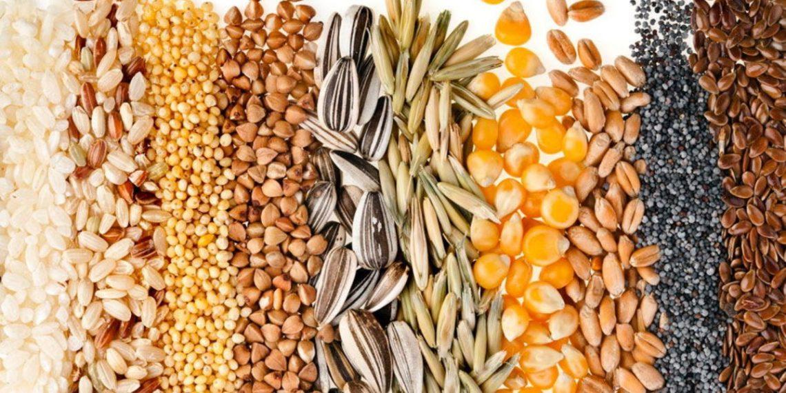 Биохимия и товароведение масличного сырья и продуктов переработки