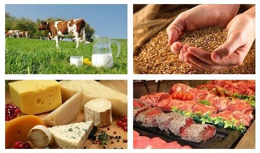Общая технология пищевых производств