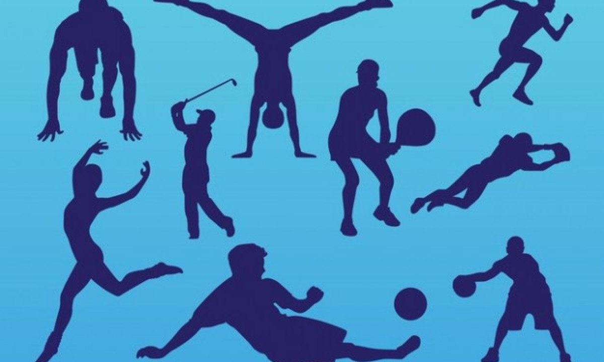 Физическая культура и спорт